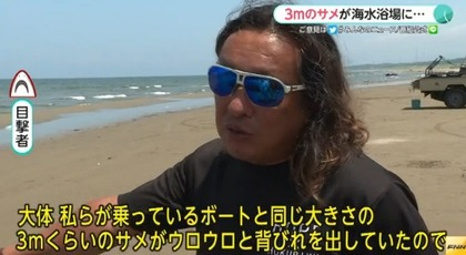 サメ 石川