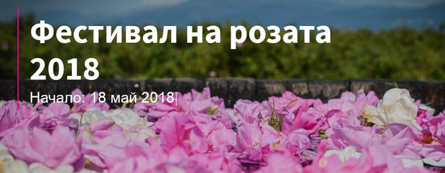 1バラ祭り