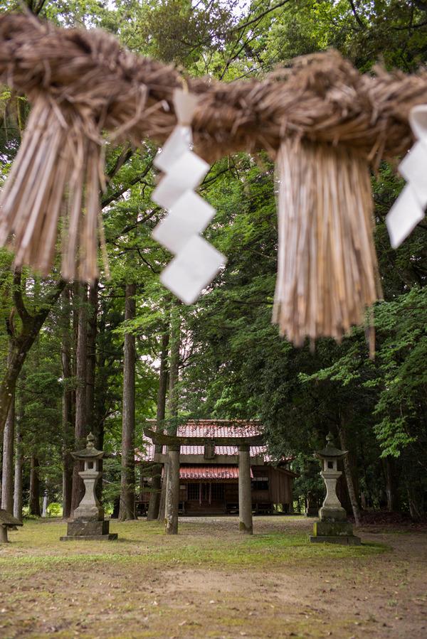 三瀬 杉神社