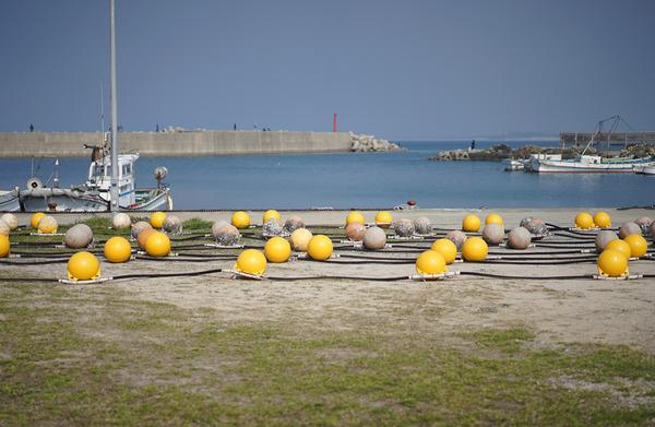 志賀島DSC03562