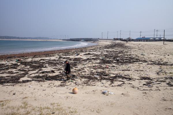 志賀島L1001769