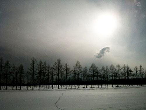 北海道の太陽