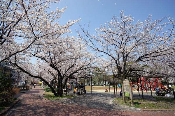公園通りDSC09112