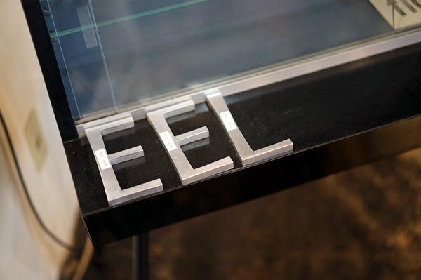 eel-DSC02324