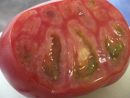 感激のトマト!