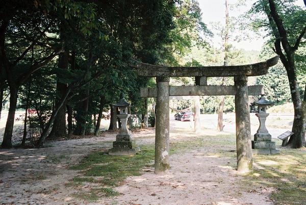 杉神社FH000035