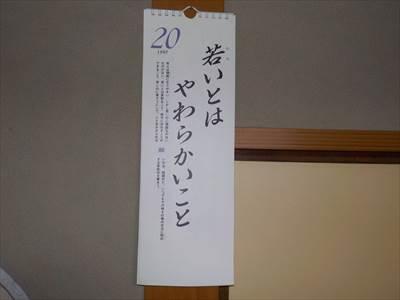 DSCN0841_R