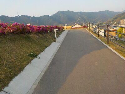 竹島命山斜路