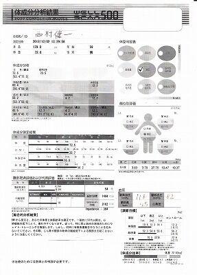 体成分分析2012・1202