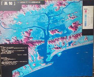 高知市標高衛星写真