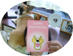バレンタインカード