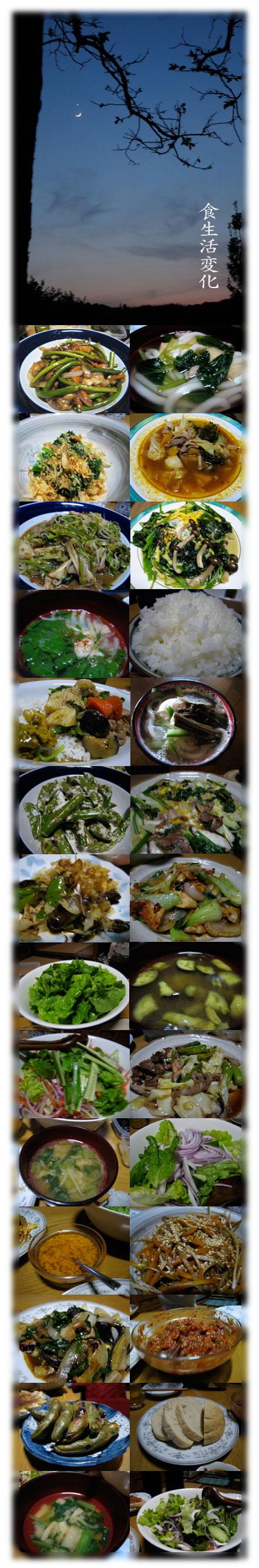 食生活変化