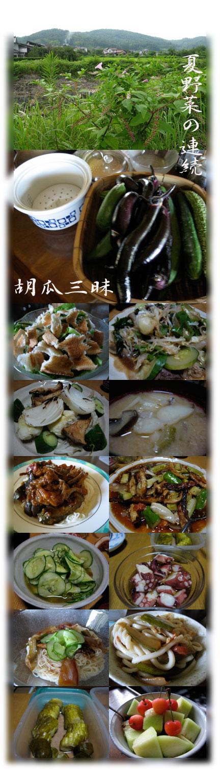 野菜料理キュウリ