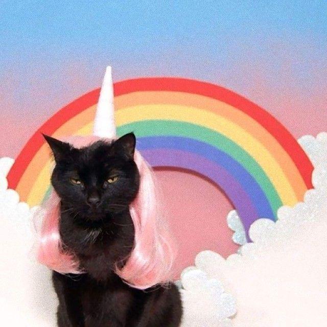 unicorn3_e