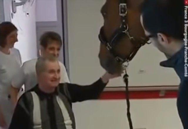 horsetherapy5_e