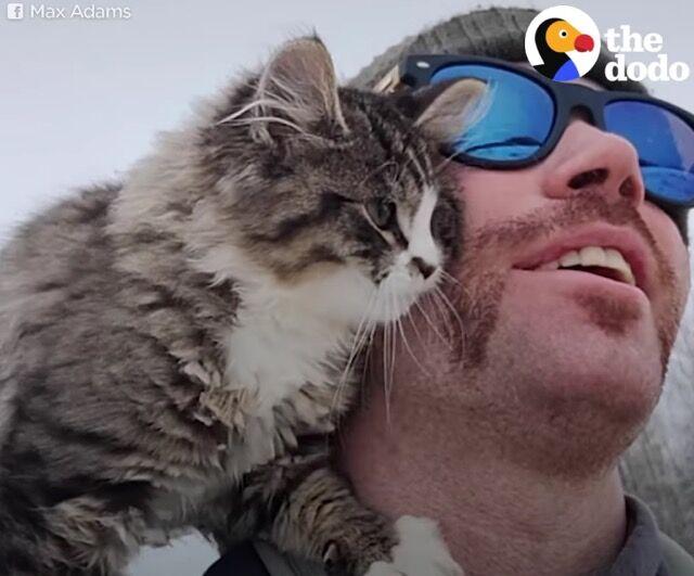 極寒の雪山に子猫が!助けた男性が子猫に名前をつけるまで