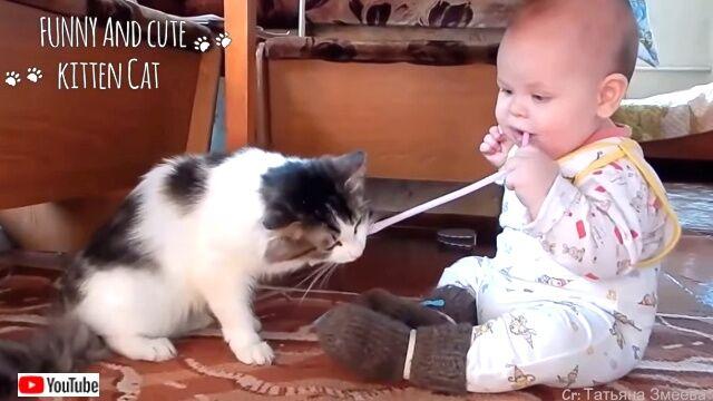 小さなニンゲンには優しくしといてやるかニャ!猫と赤ちゃんのふわふわ仲良しシーン詰め合わせ