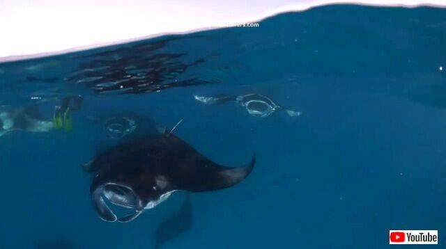 maldives6_640