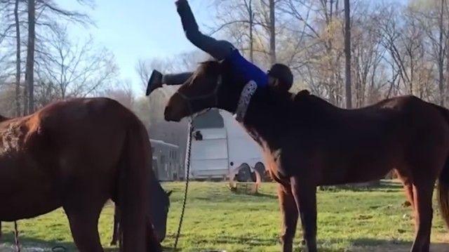 funnyhorses1_e