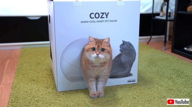 cozybox4_640