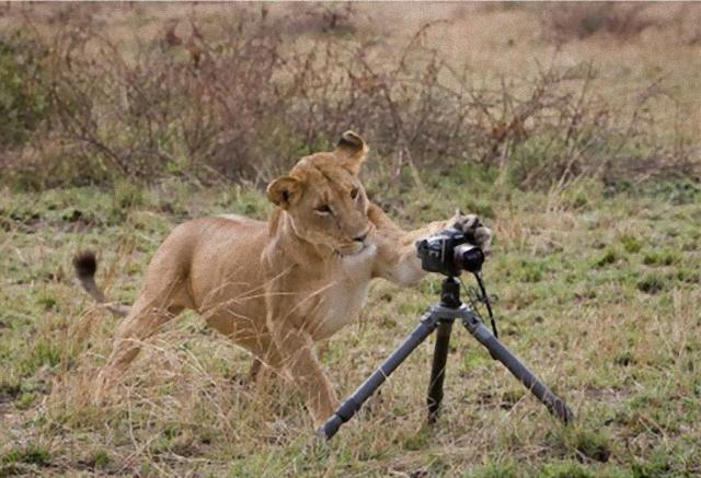 photographers20_e
