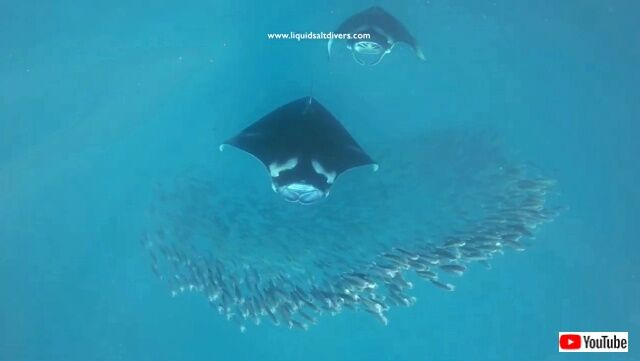 maldives7_640
