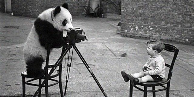 photographers10_e