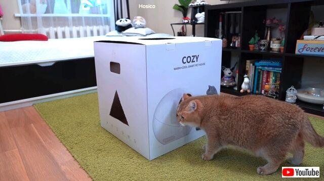 cozybox1_640