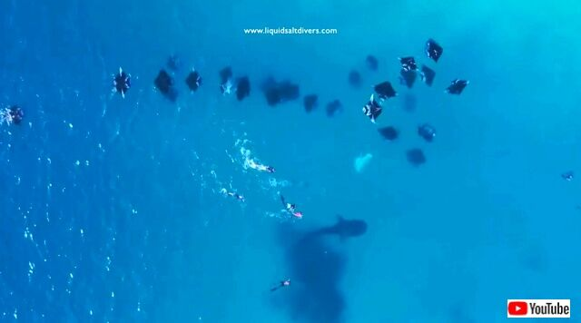 maldives5_640