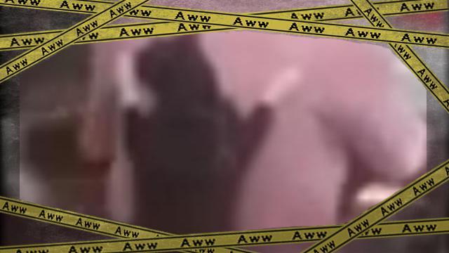 catridingabike 4 [www-frame