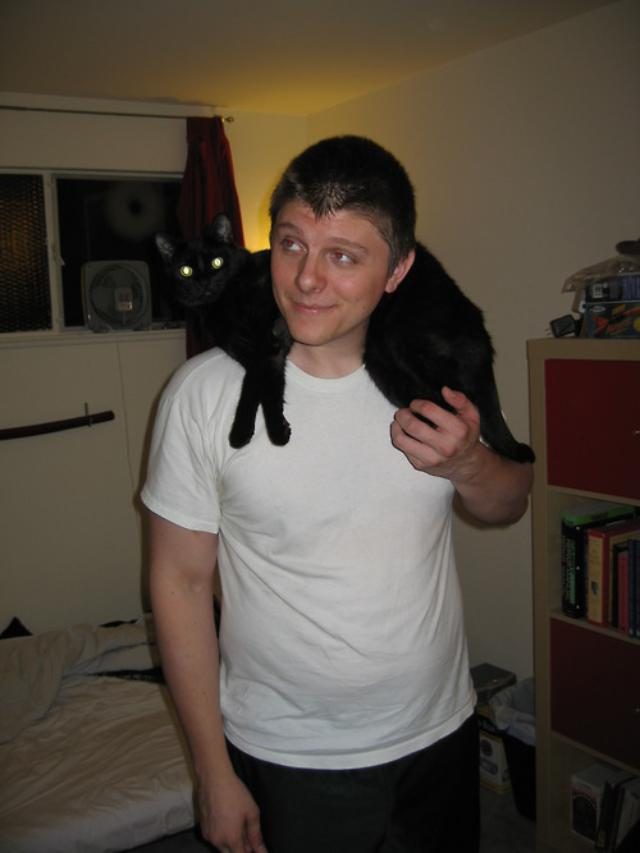 cats12ok