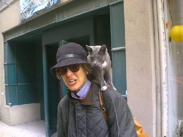 cats5 ok