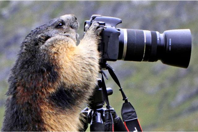 photographers21_e