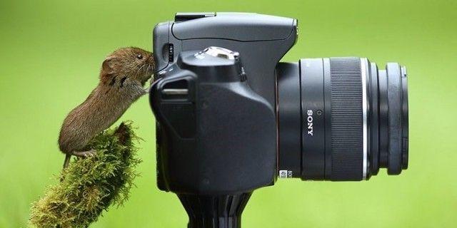 photographers12_e