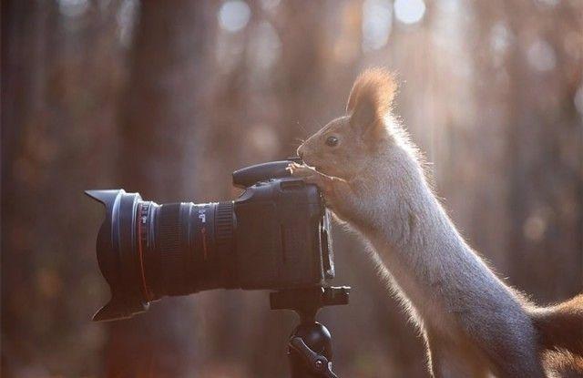 photographers15_e