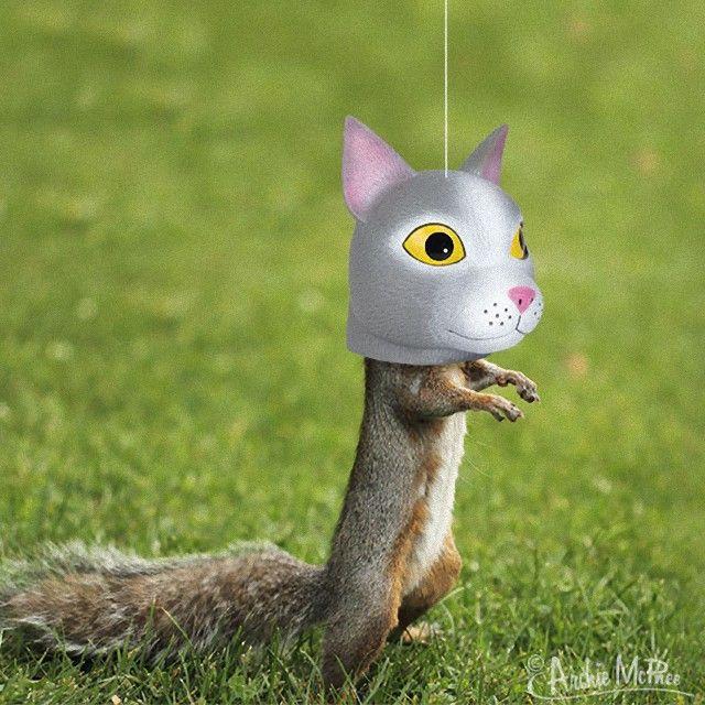 cat-head-squirrel-feeder_e