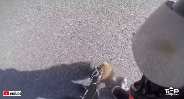 bikershelpinganimals6_batch