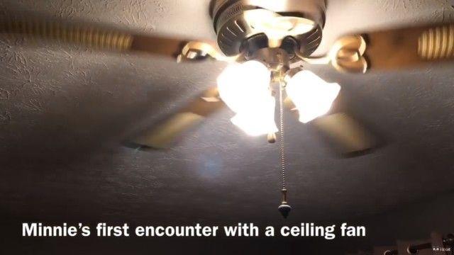 ceilingfan2_e