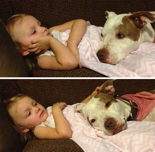 cute-kids-dogs-best-friends-friendship-17-5a9801cb2048d__605_e