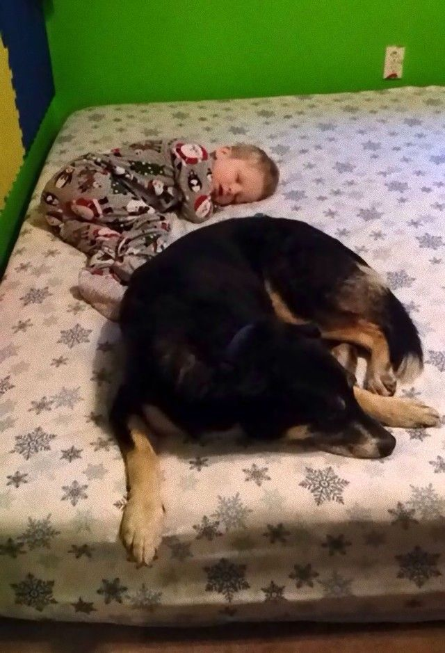 cute-kids-dogs-best-friends-friendship-157-5a9916d2e86a3__605_e
