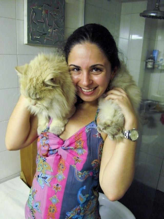 cats4 ok