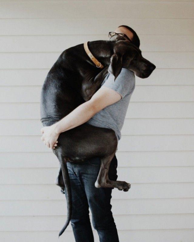 big-puppy19_e