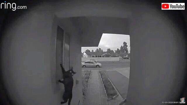 doorbell1_640