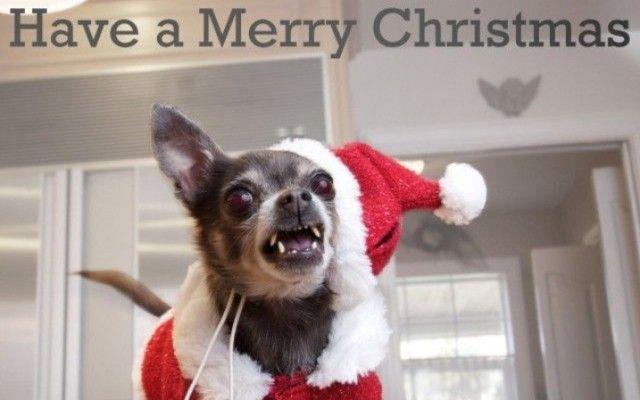 christmas0_e