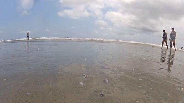 beachclam1