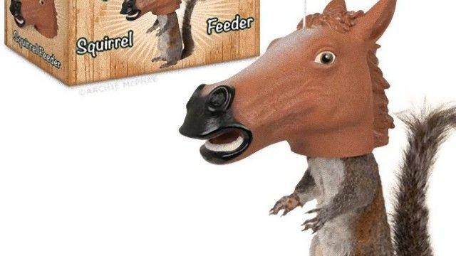horse_head_squirrel_feeder_e