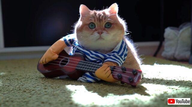 guitar4_640