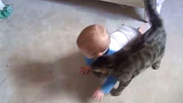 catsnbaby1