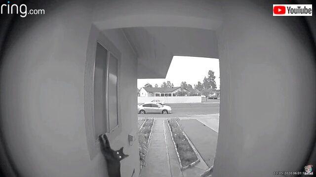 doorbell3_640