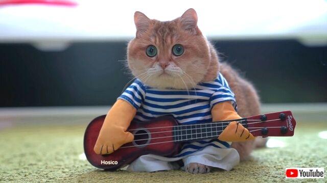 guitar1_640